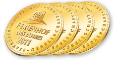 ferienh_d_jahres_medaillen
